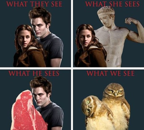 twilight-what-we-see